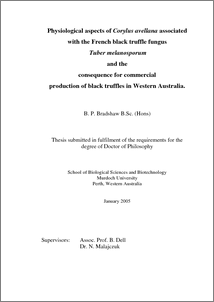 Australian digital theses program